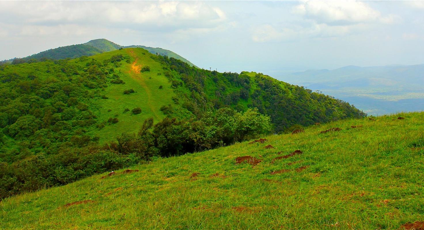 Ngong Hills image