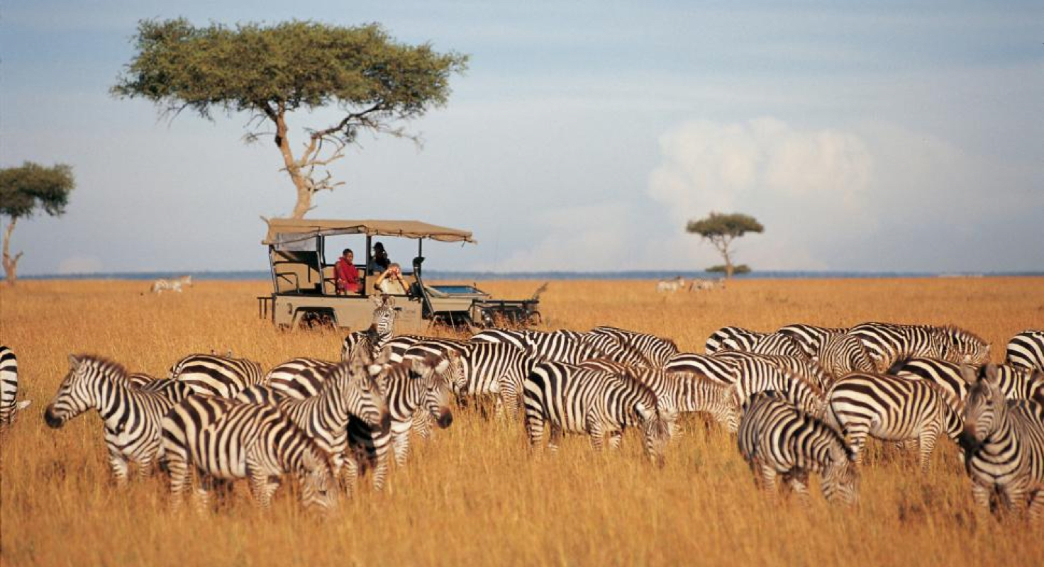 Maasai Mara image